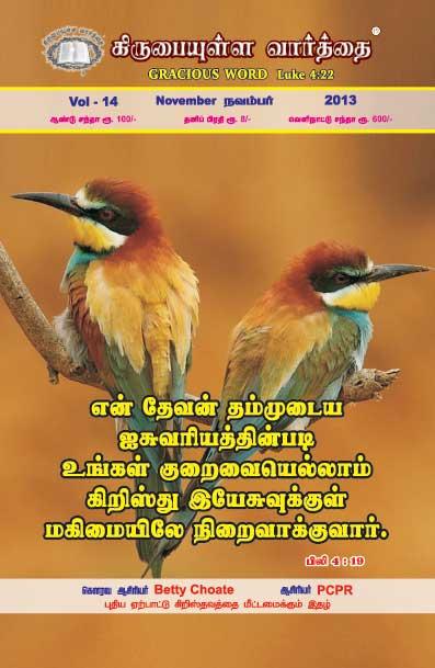 November 2013 Magazine